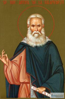 Sfântul Cuvios Antipa de la Calapodeşti. Icoană litografiată.